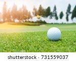 golf ball on golf course  flag... | Shutterstock . vector #731559037