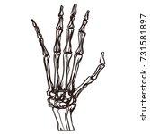 detailed hand drawn... | Shutterstock .eps vector #731581897