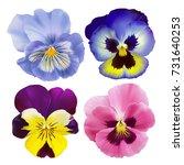 pansy flower. hand drawn vector ... | Shutterstock .eps vector #731640253
