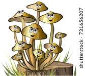 honey agar mushrooms with