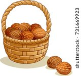 wicker basket with walnuts... | Shutterstock .eps vector #731669923
