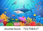 cartoon shark with coral reef... | Shutterstock .eps vector #731708317