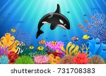 cartoon killer whale with coral ... | Shutterstock .eps vector #731708383
