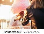 close up soft focus shot of... | Shutterstock . vector #731718973
