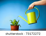 Hand Watering A Plant With...