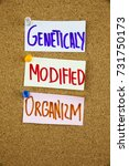 Small photo of GMO Genetically Modified Organism acronym on colorful sticky notes