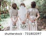 bride with bridesmaids posing ... | Shutterstock . vector #731802097