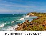 tropical coastline | Shutterstock . vector #731832967