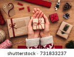 close up on female hands... | Shutterstock . vector #731833237