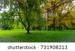 sunlight in the autumn forest.... | Shutterstock . vector #731908213