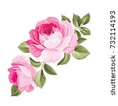 Stock vector the rose elegant card a spring decorative bouquet of roses flowers small floral garland vector 732114193