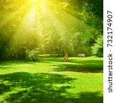 bright sunny day in park. the... | Shutterstock . vector #732174907