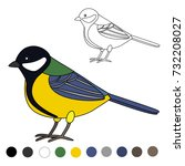 titmouse coloring page | Shutterstock .eps vector #732208027