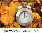 Clock With Leaves Wintertime