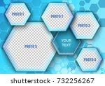 template for photo collage in... | Shutterstock .eps vector #732256267