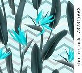 strelitzia reginae blossom or... | Shutterstock .eps vector #732319663