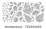 autumn leaves. happy... | Shutterstock .eps vector #732341653