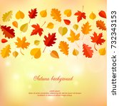 autumn background with leaves.... | Shutterstock .eps vector #732343153