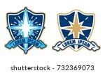 star and shield logo vector   Shutterstock .eps vector #732369073