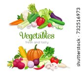 banner with vector vegetables.... | Shutterstock .eps vector #732516973