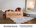welcome autumn. some dry leafs... | Shutterstock . vector #732522553