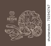 background with reishi ... | Shutterstock .eps vector #732542767