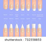 nail forms. female manicure.... | Shutterstock .eps vector #732558853