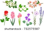 Set Of Popular Garden Flowers...