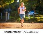 european bearded old man in... | Shutterstock . vector #732608317