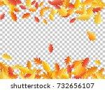 oak leaf border abstract... | Shutterstock .eps vector #732656107