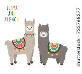 two cute llamas standing and... | Shutterstock .eps vector #732768277