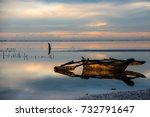 beautiful sunrise at low tide | Shutterstock . vector #732791647