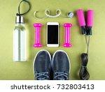 flat lay shot of sneakers ... | Shutterstock . vector #732803413