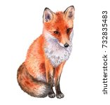fox isolated on white... | Shutterstock . vector #732835483