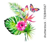 beautiful tropical palm leaves... | Shutterstock . vector #732844567