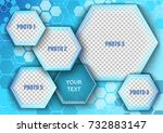 template for photo collage in... | Shutterstock .eps vector #732883147
