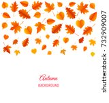 autumn background with leaves.... | Shutterstock .eps vector #732909007