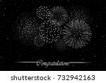 firework show on night sky... | Shutterstock . vector #732942163