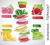 vector collection of strawberry ... | Shutterstock .eps vector #732961267