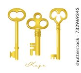 set of vintage keys. | Shutterstock .eps vector #732969343