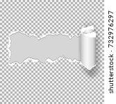 realistic vector torn paper ... | Shutterstock .eps vector #732976297