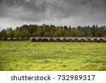 hay bales in a field in estonia ... | Shutterstock . vector #732989317