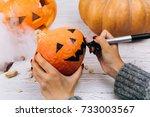 woman paints a face on a little ... | Shutterstock . vector #733003567