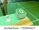score start for chair umpire   Shutterstock . vector #733004617