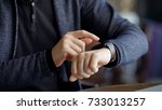 close up shot of a businessman... | Shutterstock . vector #733013257