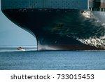 Dolphin Jumping Near Big Ship...