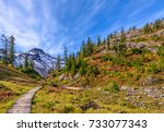 beautiful mountain river at the ... | Shutterstock . vector #733077343