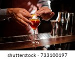 alcohol drinks  people and... | Shutterstock . vector #733100197