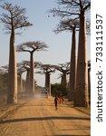local villagers walking dirt... | Shutterstock . vector #733111537