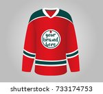 red and green hockey jersey  | Shutterstock .eps vector #733174753